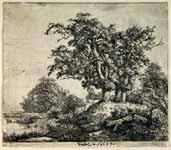 El grupo de los tres robles, 1649