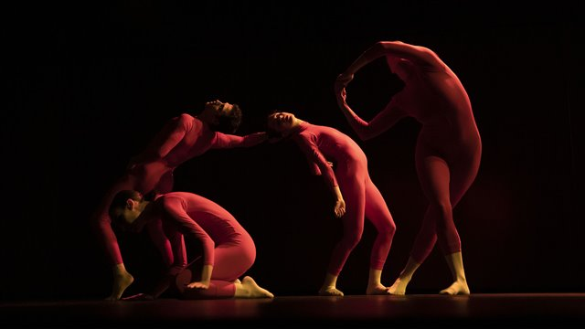 Educational concert: Creating with the body: Discovering dance