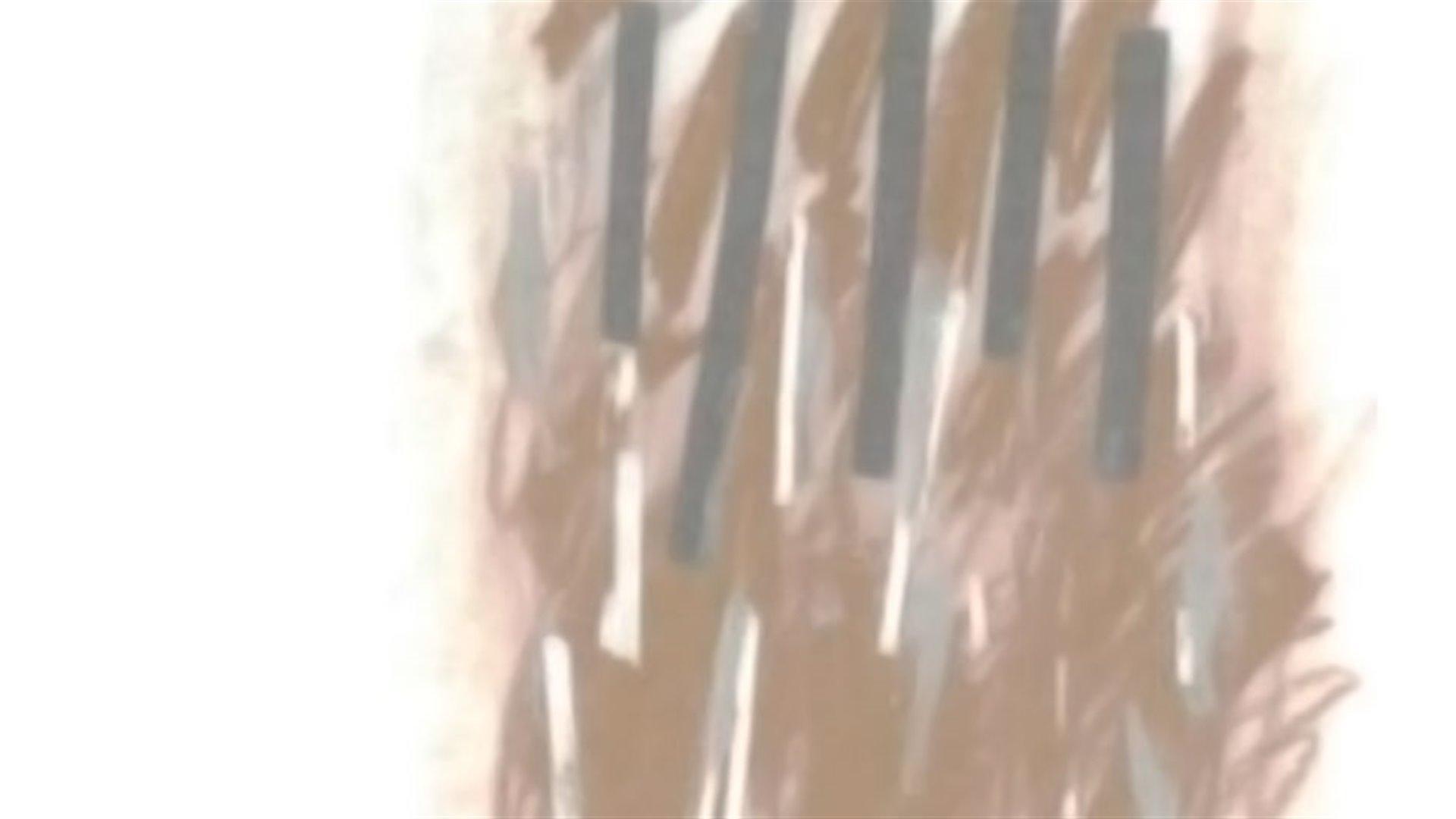 Concierto especial 31. Presentación del Catálogo de obras de Salvador Bacarisse, de Ch. Heine