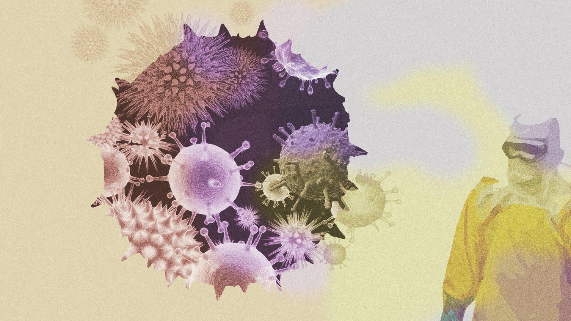 Virus del nuevo milenio
