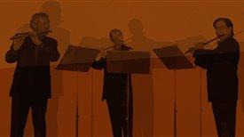 The flute trio (I)