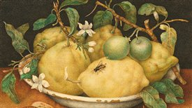 Historia de la comida en España (I): Los alimentos que vinieron de Oriente