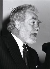 Guy Weelen