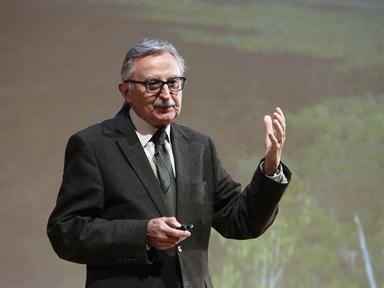 Miguel Rivera Dorado